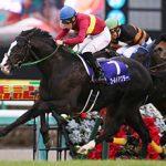 【介绍日本】有馬記念【INTRODUCE JAPAN】