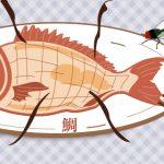 【学习日本谚语!】日本のことわざ-腐っても鯛