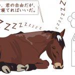 【学习日本谚语!】日本のことわざ-馬耳東風