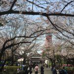 【Tabito的東瀛之旅】东京樱花胜地——上野公园的故事③《天海·下卷》