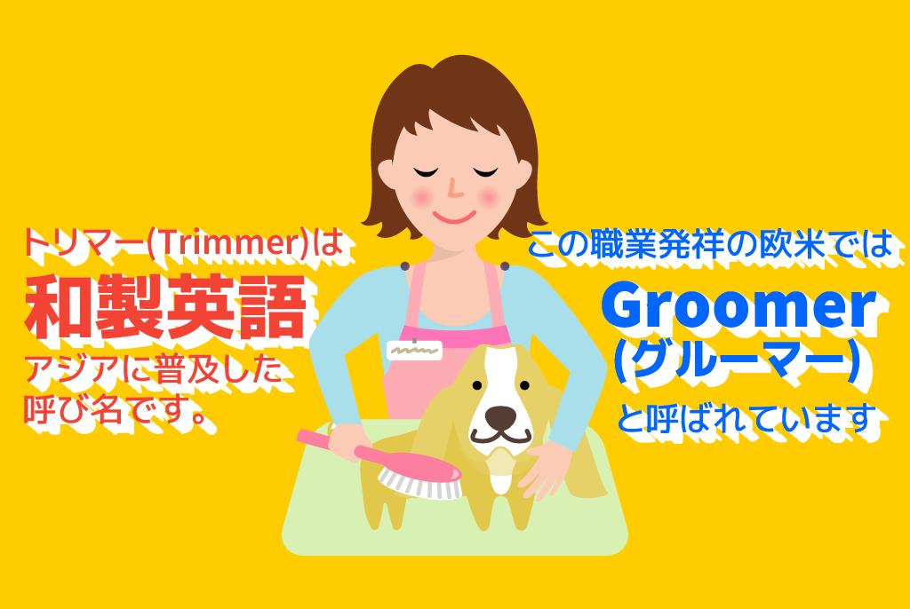 【日本职业】 トリマー/Pet Groomer/宠物剪毛师 【Japanese Occupations】