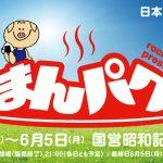 【日刊イントロジャパン】日本最大級!昭和記念公園で食べまくり!【5月31日号】