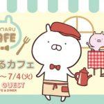 【6月12日号】うさまるカフェ、北海道初上陸!/ 兔丸咖啡in北海道!
