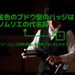 【日本职业】 ソムリエ/Sommelier/斟酒师【Japanese Occupations】