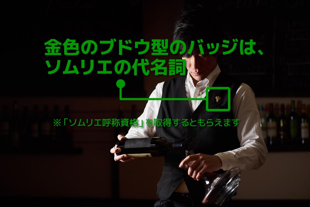 【日本职业】 ソムリエ/Sommelier/斟酒服务员【Japanese Occupations】