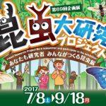 【7月12日号】Research Insects project in IBARAKI / 昆虫大研究プロジェクト