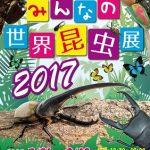 【8月6日号】World Insects expo / みんなの世界昆虫展2017