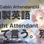 【日本职业】 CA/Flight Attendant/空姐 【Japanese Occupations】