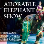 【10月23日号】Kinoshita Circus in Kumamoto / 木下大サーカスを熊本で!
