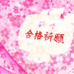 【介绍日本】大学受験(後編) / Entrance exam【INTRODUCE JAPAN】