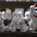 【Tabito的東瀛之旅】招财猫与著名武将之间的神秘故事